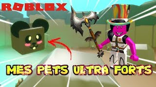 MES PETS SONT LES PLUS FORTS ! | Roblox Slaying Simulator