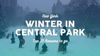 Winter in Central Park: Top 10 Reasons to Go