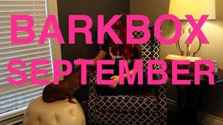 BarkBox Unboxing September 2014 Thumbnail