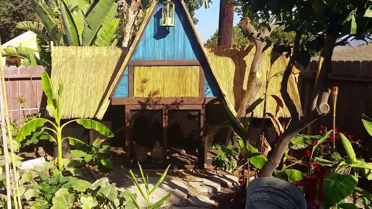 Tropical Garden Update Southern California Youtube