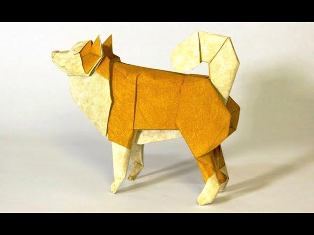 簡単 折り紙 折り紙犬折り方立体 : cbox.jp