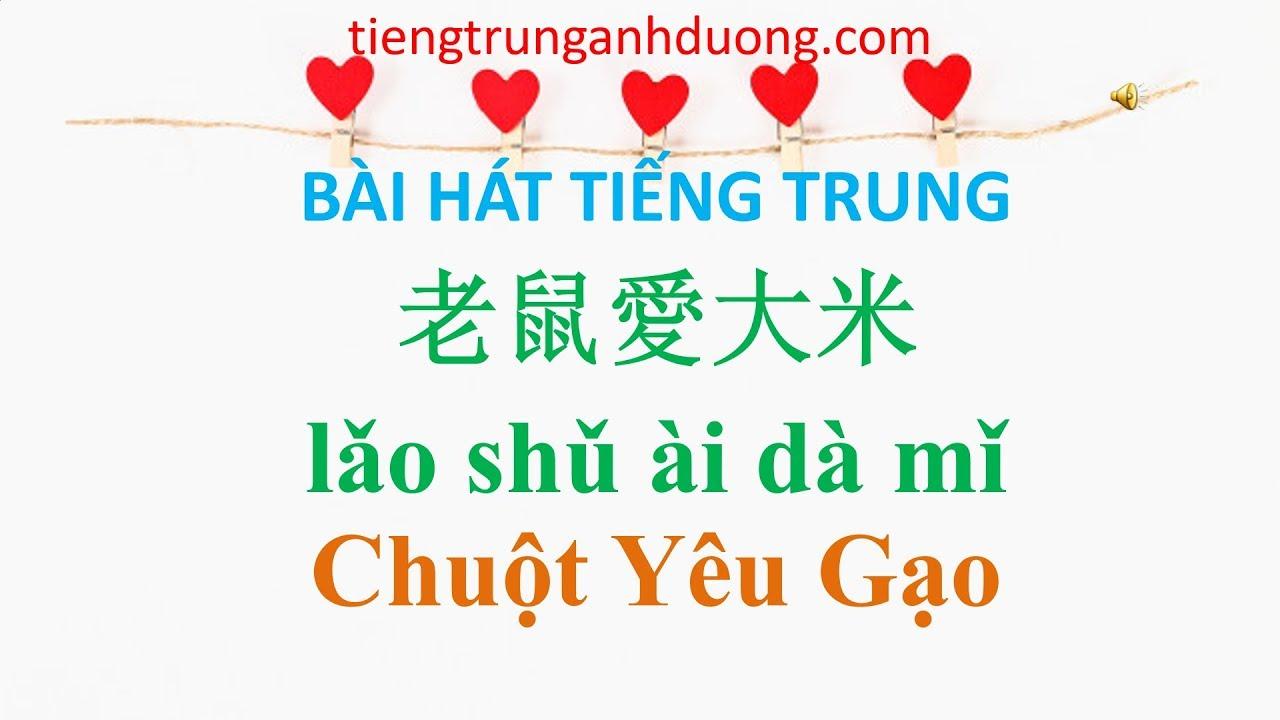 Học bài hát tiếng Trung: Chuột yêu gạo 老鼠愛大米 lǎo shǔ ài dà mǐ