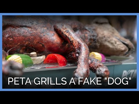 "PETA Sparks Outrage By Grilling A Fake ""Dog"""
