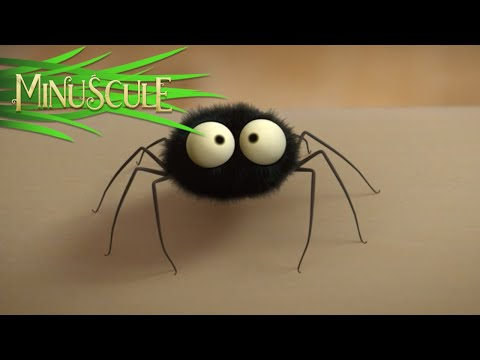 Minuscule - Microzilla / Microzondes (Season 2)