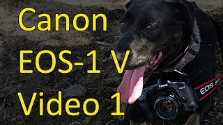 Canon серії EOS-1 V відео інструкція 1 з 3