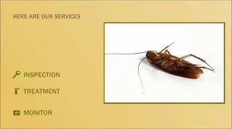 Scorpion Control Tempe AZ