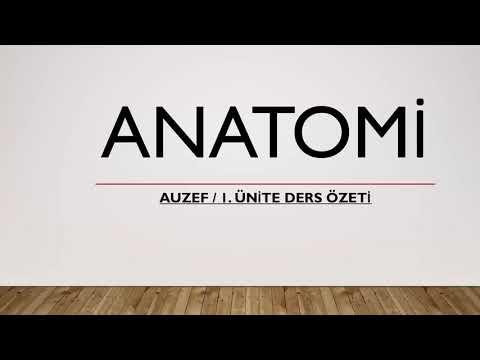 AUZEF Anatomi 2020  1.Ünite