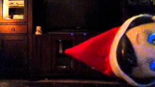 Elf On Shelf Caught on Video!