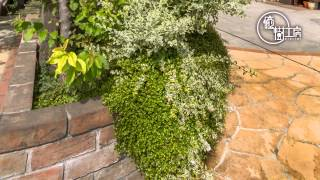より、厳選エクステリア&ガーデンリフォーム工事例のご紹介。 http://w...