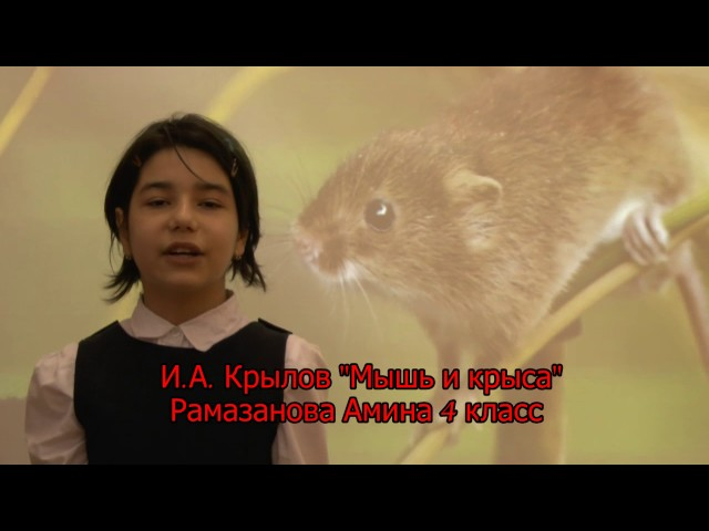 Изображение предпросмотра прочтения – АминаРамазанова читает произведение «Мышь и Крыса» И.А.Крылова