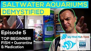 Saltwater Aquariums Demystified Ep. 5: TOP BEGINNER FISH + Quarantining and Medicating Livestock