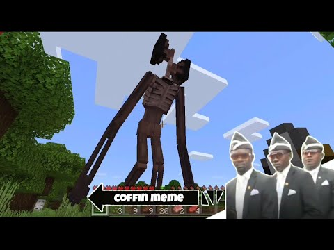Astronomia Coffin Meme In Minecraft Part 25