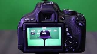 ISO, Aperture & Shutter Speed - Understanding Exposure W/ the Canon T3i