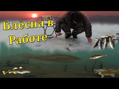 НАВАГА АТАКУЕТ Самодельные Блёсна. Зимняя Рыбалка на Море в Тавричанке.