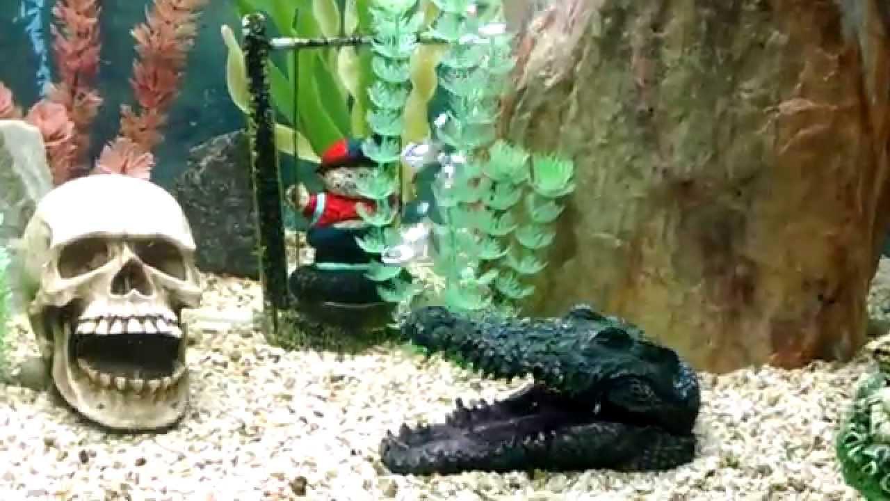 Enfeites para aquario com movimento. - YouTube