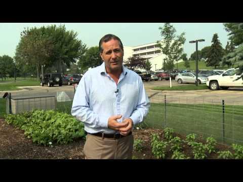 Basin's Backyard Garden demonstrates cooperative roots
