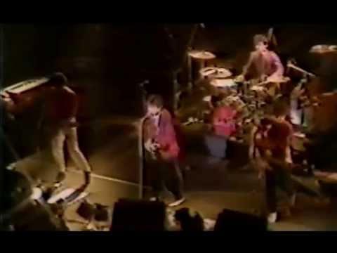ザ・ルースターズ EARLY LIVE at 久保講堂 1981/6/27
