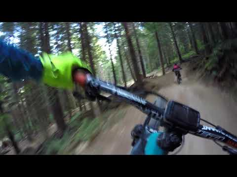 Unemployment Line | Galbraith Mountain Biking Trails | Bellingham, WA in 4K