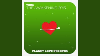 The Awakening 2013 (Radio Edit)