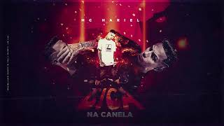 Mc Hariel Bica Na Canela DJ Pedro Lan amento 2020.mp3