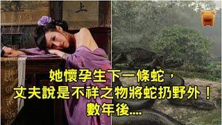 【民間故事】她懷孕生下一條蛇,丈夫說是不祥之物將蛇扔野外!數年後,蛇竟回來磕頭謝恩! thumbnail