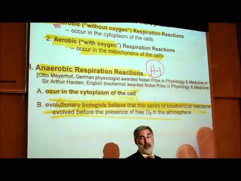 BIOLOGY; CELLULAR RESPIRATION (2012); Part 1 by Professor Fink.wmv