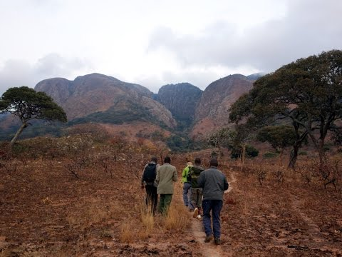 Mafinga Central: the highest point in Zambia