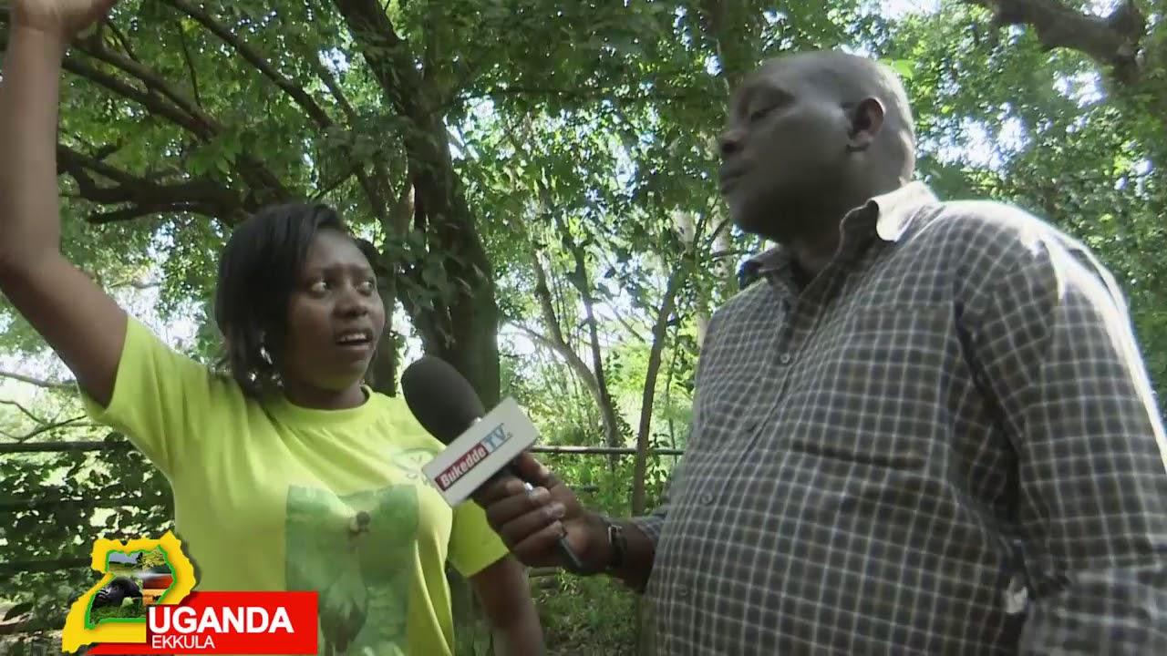 Download UGANDA EKKULA  AMAKUBO AGENJAWULO AGALI MU KKUUMIRO LY'EBISOLOA