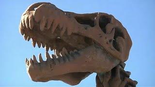 Új dinó fajt azonosítottak Mexikóban