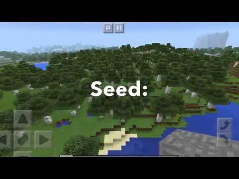 MCPE Birch/Dark Oak Forest & Savanna Seed