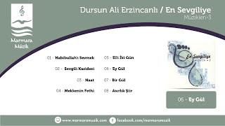 Dursun Ali Erzincanlı - Enstrümantal  - Ey Gül Resimi