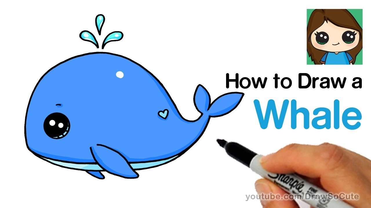 How to Draw a Baby Whale Cute and Easy - YouTube