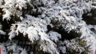 Зимние зарисовки с южаками КРЫМ АК-КАЯ(, 2011-01-01T22:08:05.000Z)
