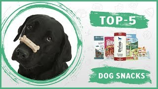 Best 🐶 Dog Treats and Snacks 🐶 Review - TOP 5