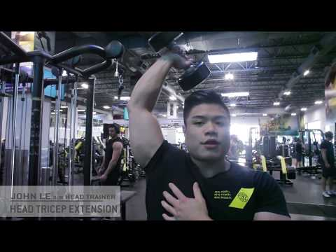 99 B Head Triceps Extension | Golds Gym | BC