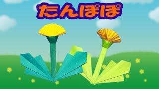 「ばぁばの折り紙」へようこそ! この動画では、折り紙の「タンポポ」の...
