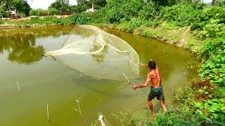 Net Fishing | Catching Fish With Cast Net | Net Fishing in the village (Part-92)