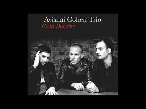 Avishai Cohen - Chutzpan