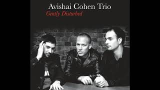 Video Avishai Cohen - Chutzpan download MP3, 3GP, MP4, WEBM, AVI, FLV Januari 2018