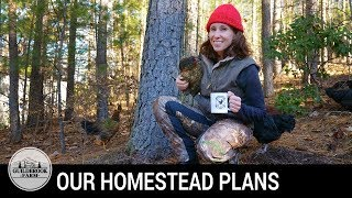 The Dirt: We Answer Questions About Our Off-Grid Homestead Plans