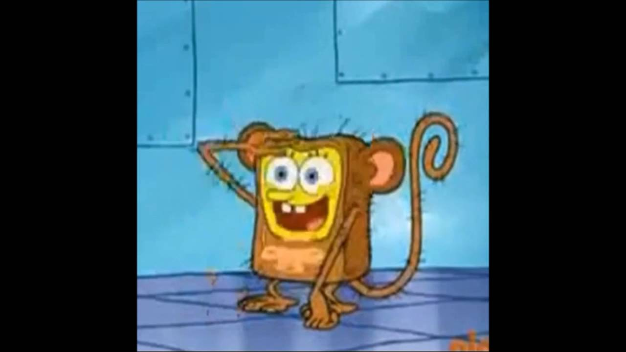 Dank spongebob memes compilation v1