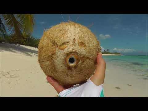 How to crack coconuts, Christmas Island, Kiribati.