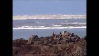 MEGA TSUNAMI   Caught on camera   Biggest Tsunami in the world caught on tape