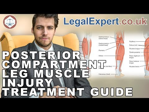 Posterior Compartment Leg Muscle Injury Treatment Guide ( 2019 ) UK