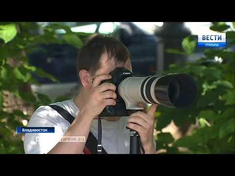 Во Владивостоке прошла «Большая приморская фотосушка»