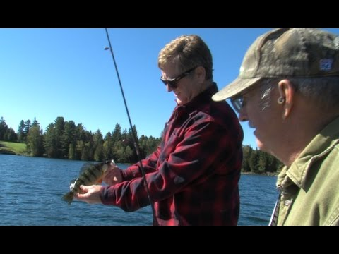 Outdoor Journal - Perch Fishing