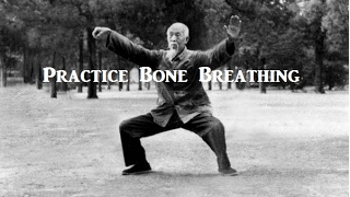Taoist Masters and the Legacy of Bone Breathing