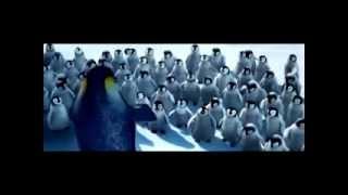осетинские пингвины))*