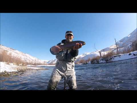 Winter Fly Fishing In Idaho