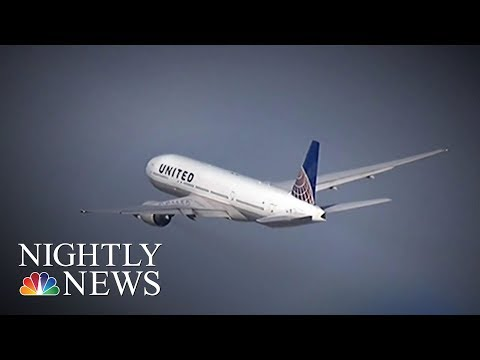 United Airlines Puts Dog On Wrong Plane, Makes Unscheduled Landing | NBC Nightly News
